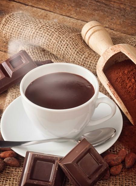 Cacao à l'ancienne hyperprotéiné (7 sachets)